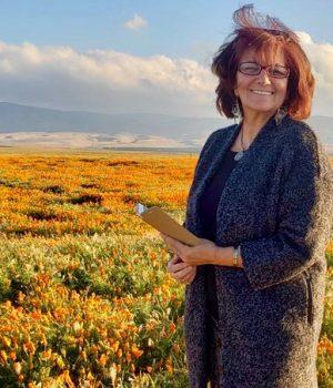california-poppins-mizard